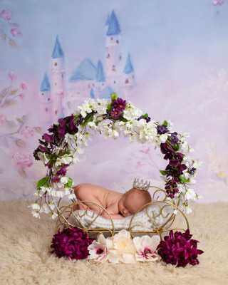 belleville_newborn_photographer_st_louis_newborn_baby_portrait_photography